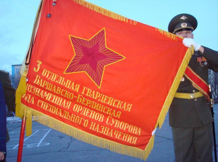 ВЧ 21208. Знамя 3-й бригады специального назначения