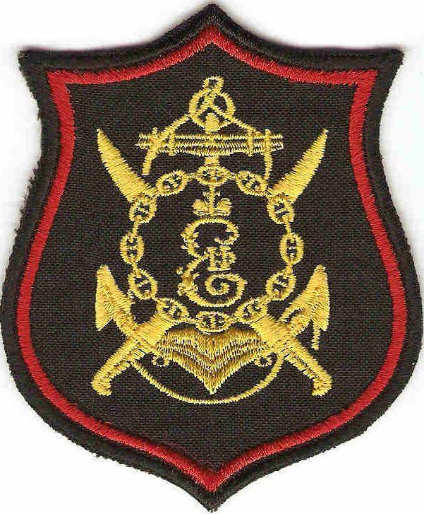 ВЧ 13140. Нарукавный знак 810-й бригады морской пехоты
