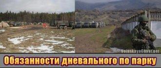 Обязанности дневального по парку в армии