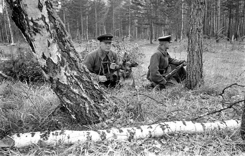 Пограничники во время Великой Отечественной войны